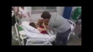 Wiedział, że jego pani umiera! Wskoczył na szpitalne łóżko i pożegnał ją w niesamowicie wzruszający sposób!