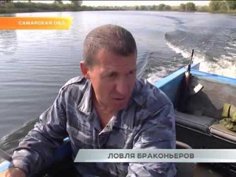 законы самарской области о ловле рыбы