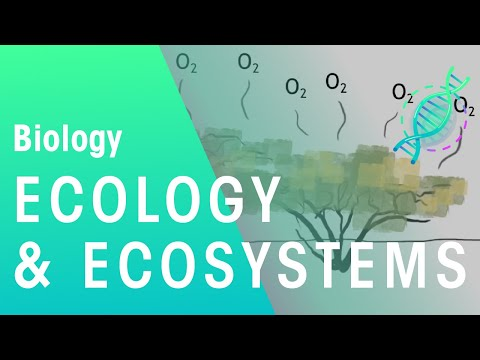 Anpassung und Zusammenleben (Kapitel Intro) - Ökologie und Umwelt - Die Virtuelle Schule,