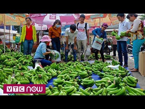 Đổ xô trồng cây ăn trái dù chưa biết bán cho ai | VTC1 - Thời lượng: 2 phút, 57 giây.