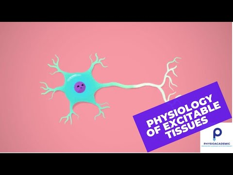 Physiology of excitable tissues