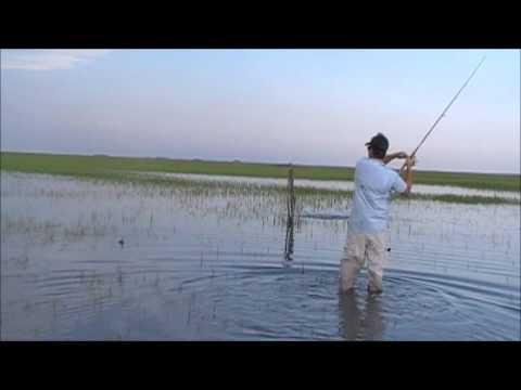 Flood Tide Redfishing, Charleston SC