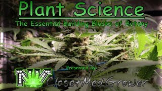 Plant Science: The Essential Building Blocks of Botany by  NVClosetMedGrower