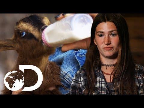 Snowbird Brown Doesn't Want To Kill The Animals She Raised   Alaskan Bush People