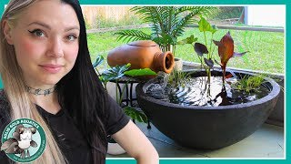 PATIO POND for Fancy Goldfish! by Solid Gold Aquatics