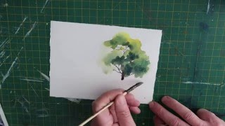 How To Paint A Simple Tree In Watercolour