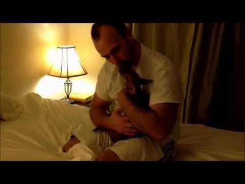 """Chihuahua Toñito and his dada – Jealous Guy """"John Lennon"""""""