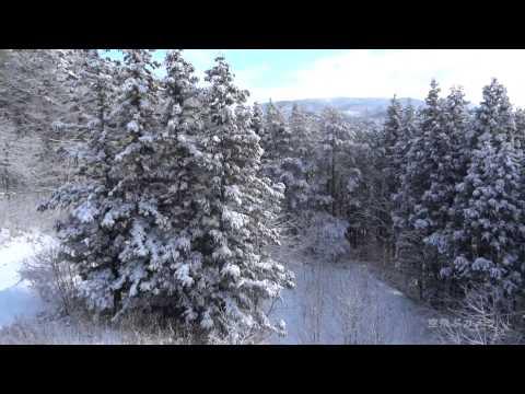 空飛ぶカメラ「雪景色」01/23