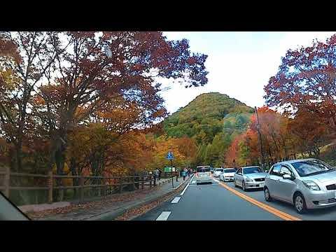 奥日光 竜頭ノ滝付近の紅葉(紅葉見頃)
