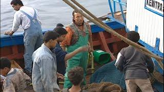 Video Les Petits Débrouillards du Maroc - Documentaire choc MP3, 3GP, MP4, WEBM, AVI, FLV Oktober 2018