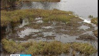 Озеру Гурвич в Карелии угрожает экологическая катастрофа