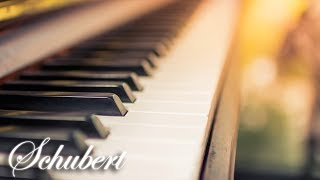Schubert Classical Music for Studying, Concentration, Relaxation | Study Music | Piano Music