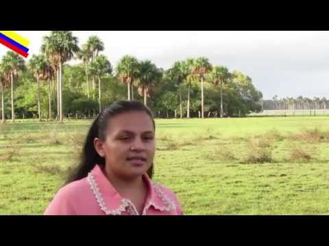EL NIÑO DE LA CALLE - LIDA OCHOA - PASAJE - Música Llanera Cristiana