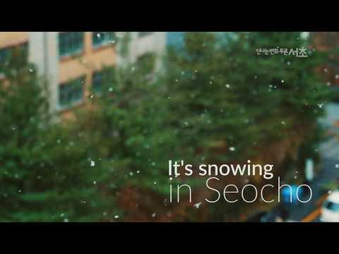 서초에 눈이 와요~