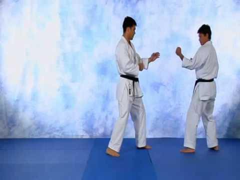 Lyoto Machida Videos