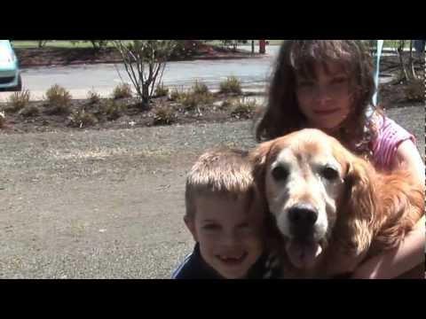 Lucky, ein Hund und seine Ärzte
