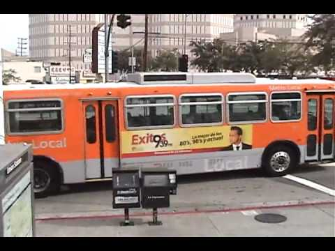 Various busses in Los Angeles Part 1