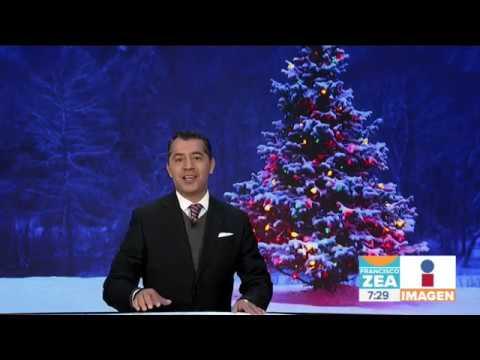 Cuantó dinero ganan los que venden Árboles de Navidad