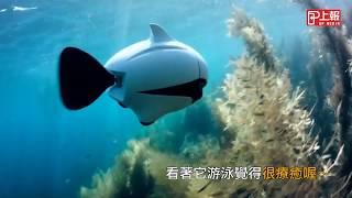 BIKI 介紹影片