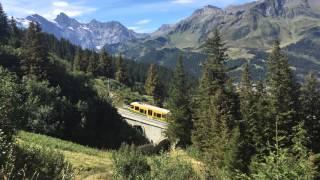Wengen Switzerland  City new picture : The walk from Kleine Scheidegg to Wengen - Switzerland