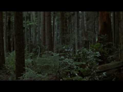 first blood - the forest scene where rambo is force to hurt the officers and tell them to get over hunting rambo or they will get a war they never regret.