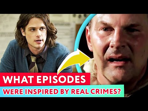 Top 6 Criminal Minds Hidden Details Revealed  |⭐ OSSA Reviews
