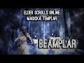 Magicka Templar Build PvE