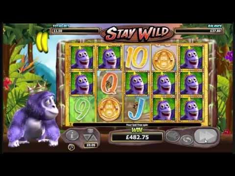 Gorilla Go Wild Slot - Stay Wild Big Win - Nextgen