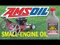 AMSOIL Synthetic Small Engine Oil  10W-30 n Fuel Stabilizer