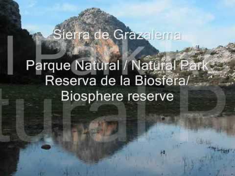 Sierra de Grazalema: Naturpark im Zentrum von Andalusien