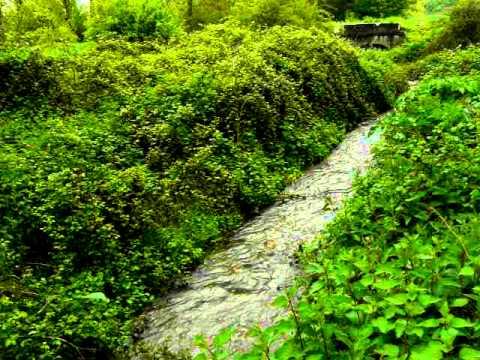 FRESNEÑA y su rio Recuercedes