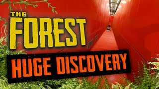 A HUGE DISCOVERY   The Forest