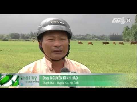 Hà Tĩnh: Khai thác quặng, người dân mất đất