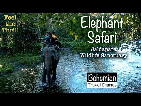 THRILILING JOURNEY |  ELEPHANT SAFARI  | Jaldapara Wildlife Sanctuary | DOOARS  | Thrilling Journey