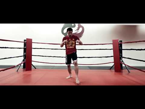 Mixed Martial Arts Moves Part 1 – The Thai Boxing Knee