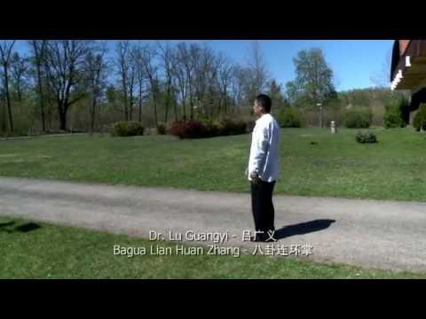Dr. Lu Guangyi – Ba Gua Lian Huan Zhang