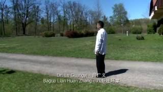 Dr. Lu Guangyi – Bagua Lian Huan Zhang