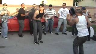 Cholos Bailando Cumbia Parody - YouTube