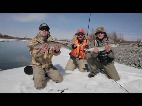 Рыбалка в самый лучший период на Дальнем Востоке (видео)