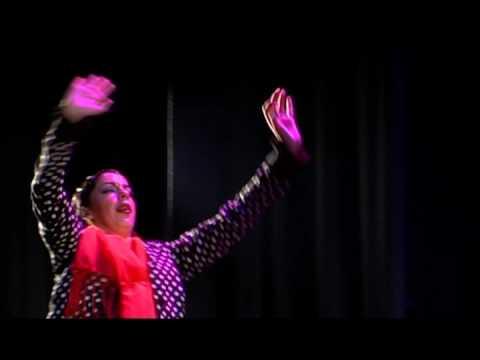 Фламенко высокого класса, исполнении Виолетта Руиз