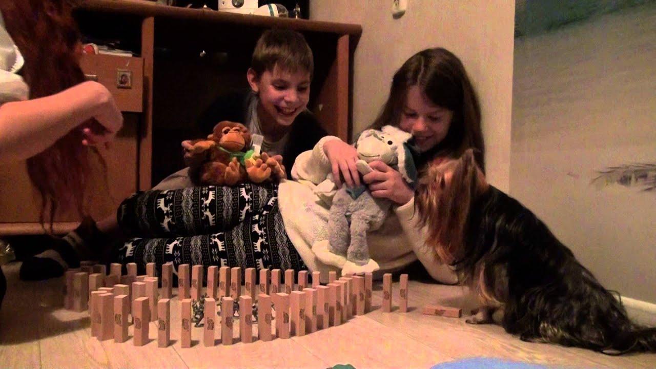 Собаководство. Смотреть онлайн: Jenga Как мы отмечали Новый год)  Вива, Муза, детки и Татьяна Скокова