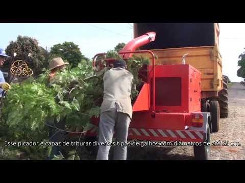 Picador / triturador de troncos e galhos Lippel - PDU 250 D picando Galhos e Troncos