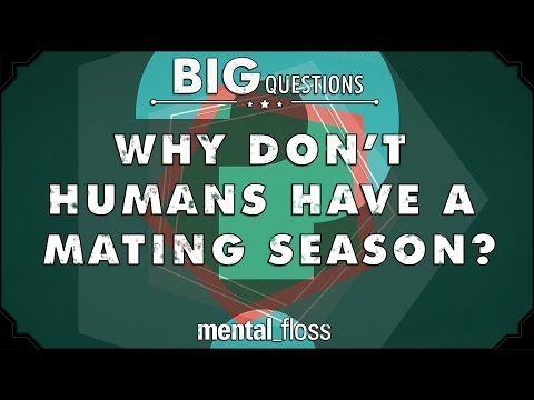 Why don t humans have a mating season
