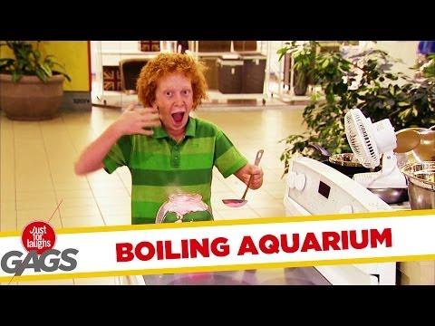 Fish Boiling In Aquarium Prank - Youtube