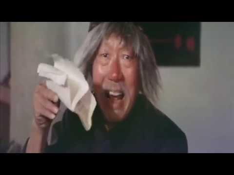 DRUNKEN MASTER 2 Dance of the Drunken Mantis Martial Arts Movie English dubbed _RETRO101_