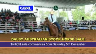 Dalby Australia  city pictures gallery : Dalby Australian Stock Horse Sale 2015