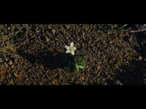 Adam & Eve - Official Trailer - New Movie