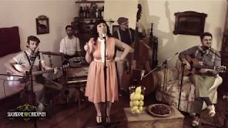 Sugarpie and the Candymen - Lemon Tree (Live in the Living Room)