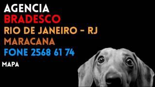 Aqui você encontra o contato completo da AGÊNCIA como: Localização, Telefone e endereço da Agencia UERJ, URB. RIO DE...