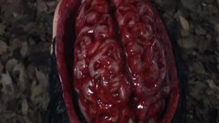 Nonton Samurai Princess  Brain Scanning Film Subtitle Indonesia Streaming Movie Download